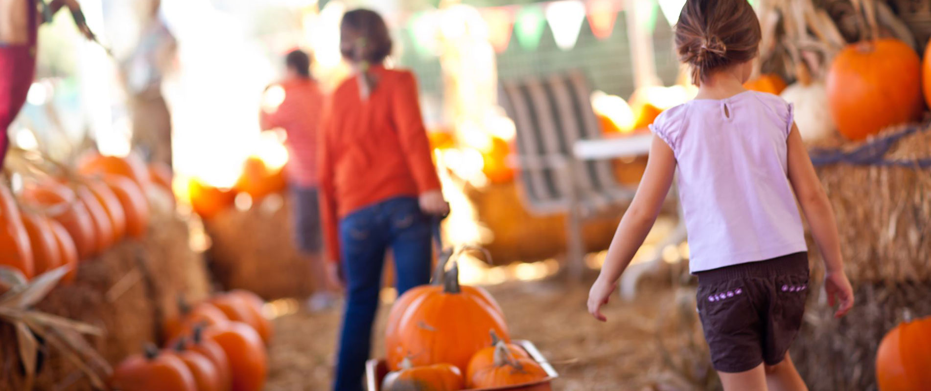 Fall Festival at Red, White and Blues Farm
